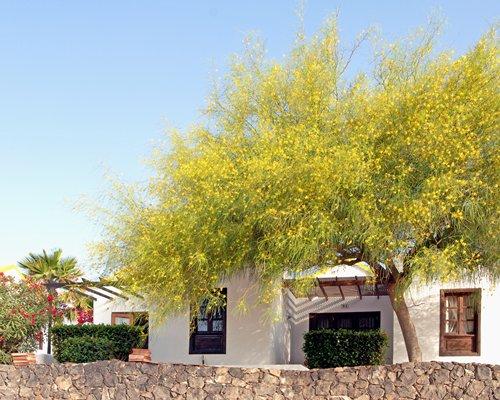 Bilde av Elite Fuerteventura Club