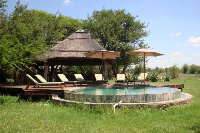 Bilde av Madikwe Game Reserve