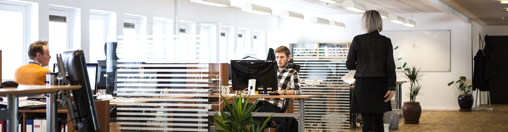Arbejde i udlandet: Undslippe kontoret