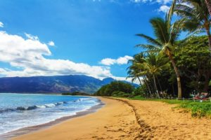 Strand Bryllup: Hawaii