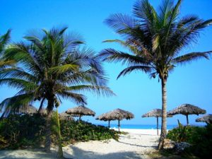 Reasons Why You Need a Timeshare