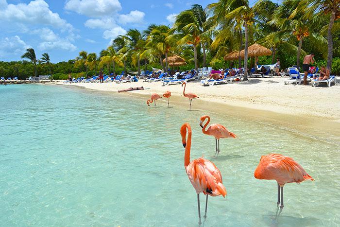 Timesharing Aruba