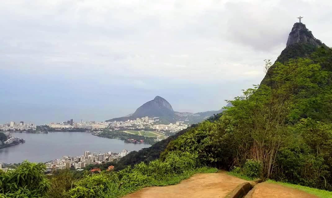 Brasilian Vista